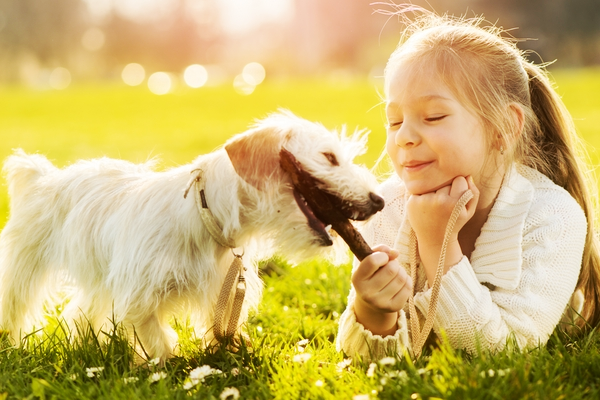 дитина та тварини-2