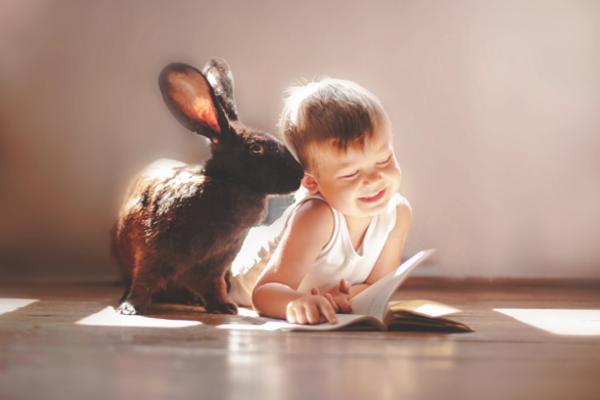 дитина та тварини-3